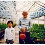 12-Hayashi 1990