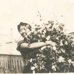 Kino Kamano Yoshida with Roses (3)