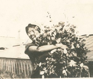 Kin Kamano Yoshida with roses at Sunnyside Nursery in Oakland.