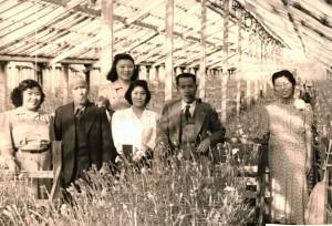 Meriko, Kumakichi, Asako, Junko, Torayoshi, and Kane Maida in a greenhouse, 1940.